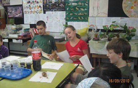 Как проходит адаптация детей репатриантов школьного возраста